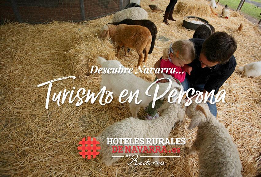 feria-del-ganado-de-santesteban-actividades-de-turismo-rural-en-navarra-norte-de-espana-noviembre-escapadas-de-fin-de-semana-en-familia
