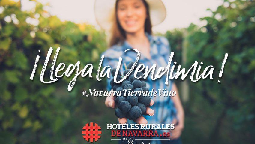 Enoturismo por España los mejores alojamientos para conocer las rutas del vino de Navarra planes de vino finde en la baja montaña de navarra, ribera y zona media de navarra. Alojamientos para viajes enoturísticos.